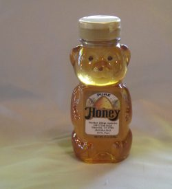 Sourwood Honey Bear