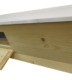 Top Bar Hive with Observation Window